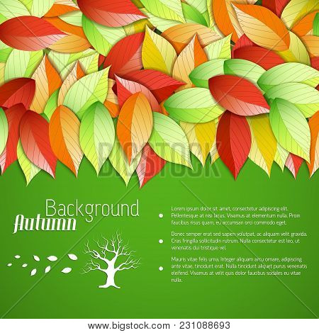Abstract Floral Bright Autumn Template With Text And Colorful Falling Leaves On Green Background Vec