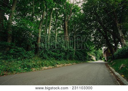 Empty Asphalt Country Road Passing Through Green Forests And Villages. Summer Countryside Landscape
