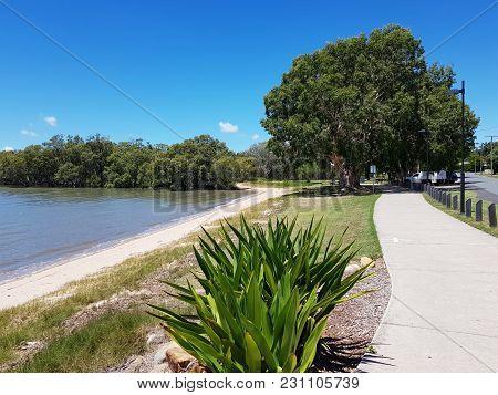 A Sea Coast With Mangrove Forest, Queensland, Australia