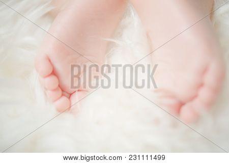 Small Bare Feet Of A Little Baby Girl Or Boy. Sleeping Newborn Child. Bare Feet Of A Cute Newborn Ba
