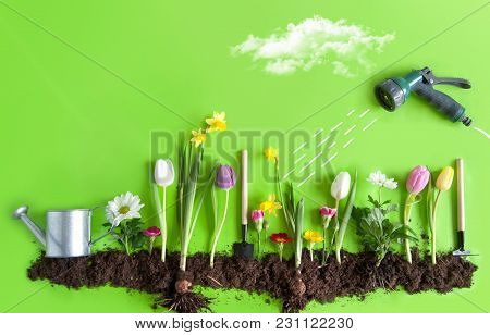 Spring Flower Bed Garden With Clouds, Light Bulb As The Sun, And Hose Pipe With A Sketch Of Water Be