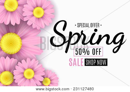 Spring Sale Banner. Pink Flowers Of Chamomile. Seasonal Poster. Special Offer. Vector Illustration.