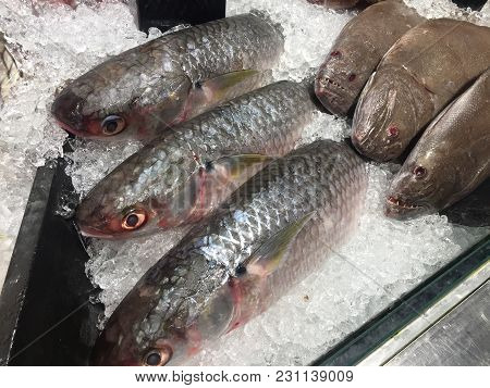 Kind Of Fish On The Market For Sell.
