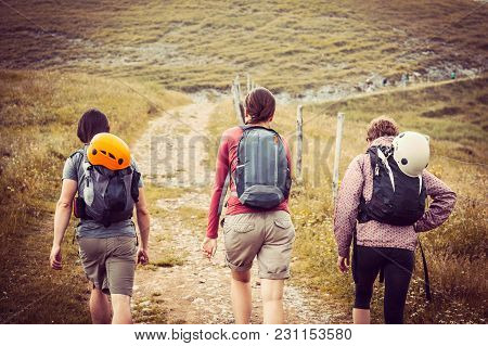 Friends Walk In Nature, Tourists On Trip To Mountains, Men And Two Women Go To Mountains, Summer Wal