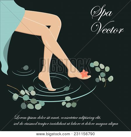 Spa Legs Vector. Slim And Long Woman Legs, Water And Eucalyptus Branches. Spa Background.