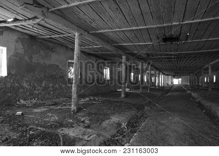 An Old Abandoned Farm For Cows. Style Abandoned.