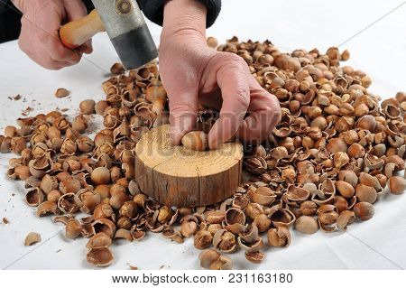 ? Woman In Her Hand Hammer For Crack Hazelnuts