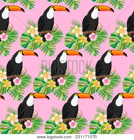 Toucan Vector Seamless Pattern With Tropical Flowers On Pink