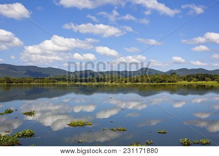 Mirror Lake With Lotus And Water Hyacinth Fringed By Woodland And Mountains In Wasgamuwa National Pa