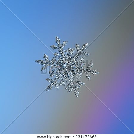 Snowflake Glittering On Light Blue Background. Macro Photo Of Real Snow Crystal: Large Stellar Dendr