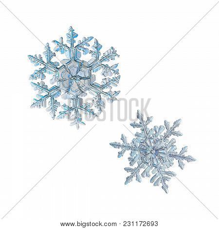 Two Snowflakes Isolated On White Background. Macro Photo Of Real Snow Crystals: Large Stellar Dendri