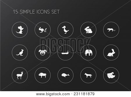 Set Of 15 Editable Zoo Icons. Includes Symbols Such As Rabbit, Rat, Whale And More. Can Be Used For
