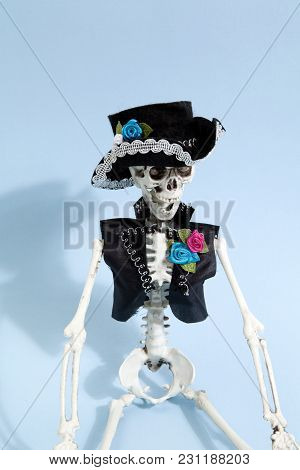 Blue Mexican Skeleton