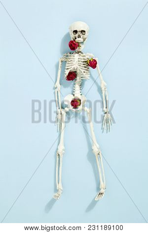 Rose Skeleton