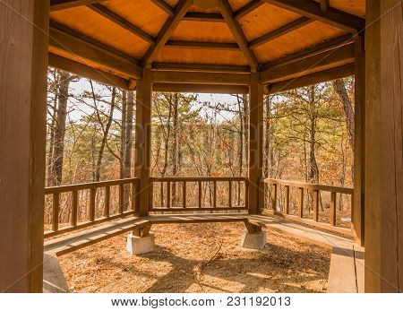 Cloeup Perspective Of Inside Of Wooden Gazebo With Roof Rafters And Beanch Seats With Trees In Backg