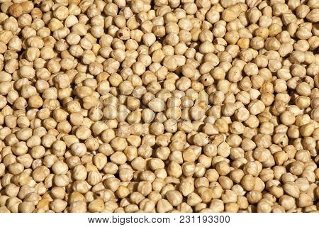 The Cicer Arietinum Is Scientific Name Of Chickpeas Legume. Also Known As Garbanzo Bean, Chick Peas