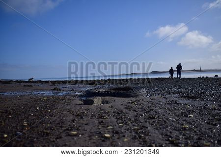 Father Son And Dog Take Walk By The Sea