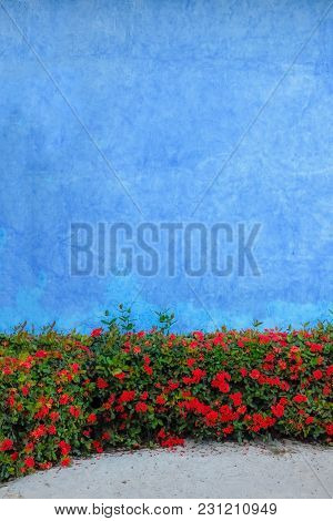 A Lavender Colored Wall With Tropical Flowers Photographed In Playa Del Carmen, Mexico.