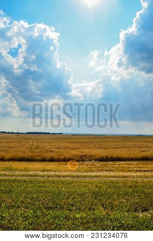Sun Rays Between Clouds In A Field With Wheat