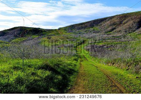 Hiking Trail On Lush Green Grasslands In A Rural Prairie