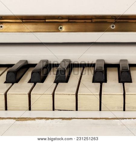 White Pianoforte, Front View Instrument, Musical Instrument. Learn To Play The Instrument At Home. W