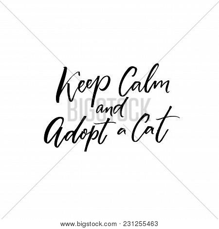 Keep Calm And Adopt A Cat. Inspirational Quote About Adopting Pets From Shelters