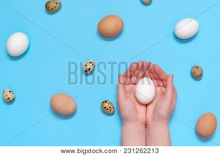 Woman Holding White Egg In Hands With Eggs On Blue Background, Copy Space. Healthy Food Concept. Top