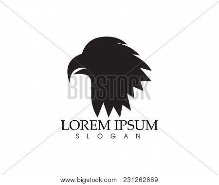 Falcon Eagle Bird Logo Template Vector Icons