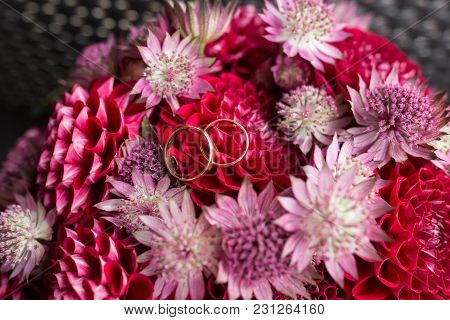 Golden Wedding Rings Lie In A Bud Of Red Dahlia. Wedding Rings Lie On A Flower Bud