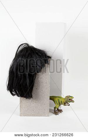 Black Wig Cinder Block And Trex