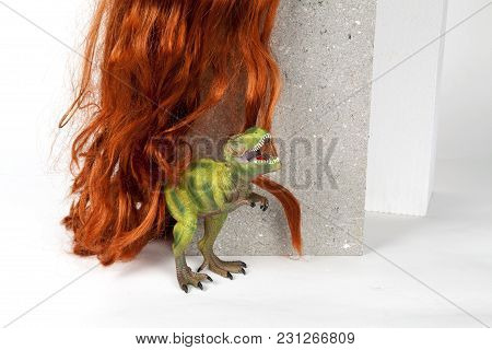 Long Red Wig Cinder Block And Trex