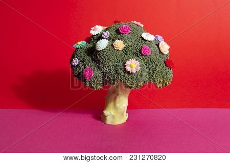Pink Red Broccoli Like A Bouquet Of Flowers