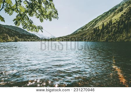 Lake In Mountains With Forest Landscape Travel Serene Scenery Wild Nature View