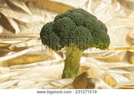 Broccoli On Gold Fabric