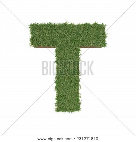Alphabet T Made Of Green Tree On White Background. 3d Illustration