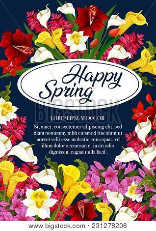 Happy Spring Floral Poster Of Daffodils, Tulips Or Garden Blooming Flowers. Vector Springtime Greeti