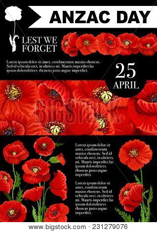 Anzac Day Poster Of Red Poppy Flowers For 25 April Australian And New Zealand War Remembrance Annive