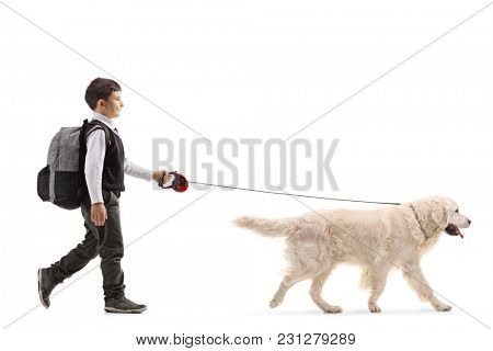 Full length profile shot of a schoolboy walking a dog isolated on white background