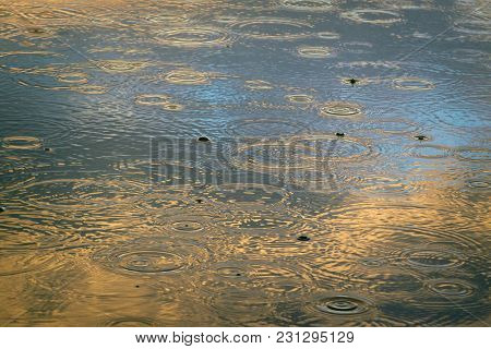Puddle With Circles On The Blue Surface Of The Water, Painted With A Setting Sun In Golden Tones.