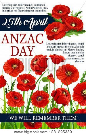 Anzac Day Poppy Flowers Design Poster For Lest We Forget Of Australia And New Zealand War Commemorat