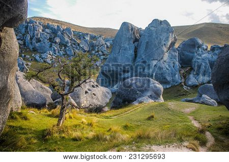 Weird limestone formations, Castle Hill, South Island, New Zealand