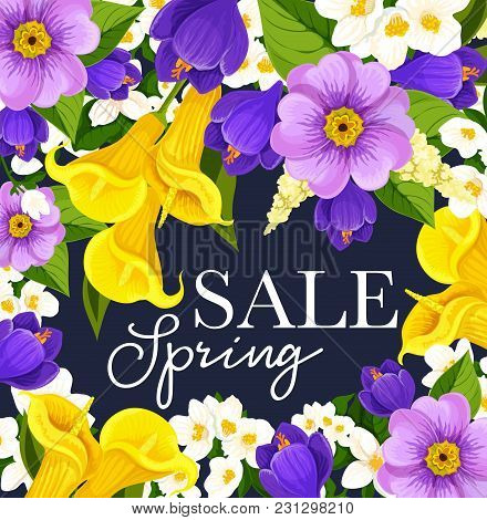 Spring Sale Poster Design For Springtime Seasonal Shopping Discount Promo. Vector Blooming Daffodils
