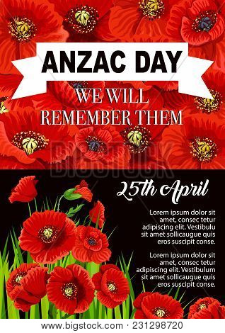 Anzac Day Poppy Flower Poster For 25 April Of Australian And New Zealand Army Corps Remembrance Anni