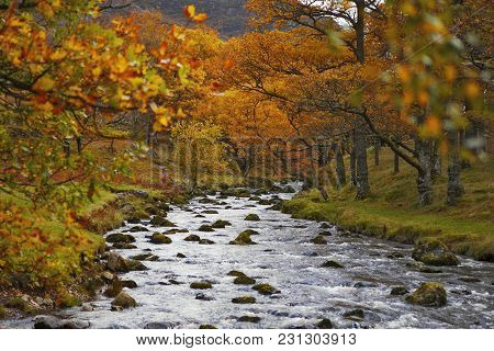 Northern Derwent Water, Keswick And Blencathra. Little Bridge In Autumn Time