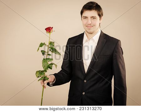 Relationship Boyfriend On Date. Handsome Man With Rose, Good Looking Male With Beautiful Red Flower