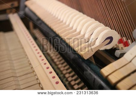 Inside Strings And Hammers Of An Upright Wooden Piano
