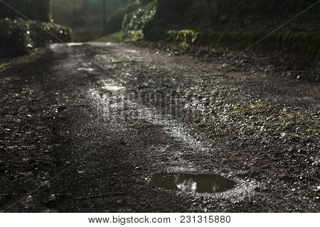 Beautiful Spring Countryside Landscape With Puddle At  Road After Rain. Selective Focus