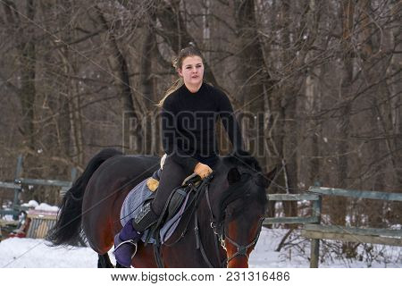 A Girl On A Horse  Jumps  Gallops. A Girl Trains Riding A Horse In A Small Paddock. A Cloudy Winter