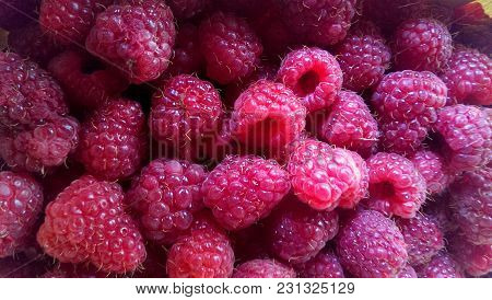 Close-up  Basket Of Raspberries. Fresh Raspberries Closeup, Bon Appetit!