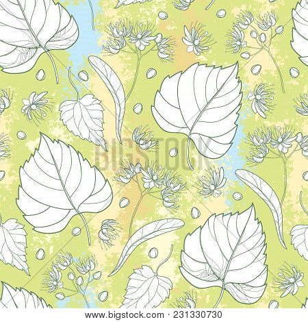Vector Seamless Pattern With Outline Linden Or Tilia Or Basswood Flower Bunch, Bract, Fruit And Orna